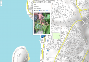 Screenshot of a map of Vanuatu with a pop up window showing an image from the island