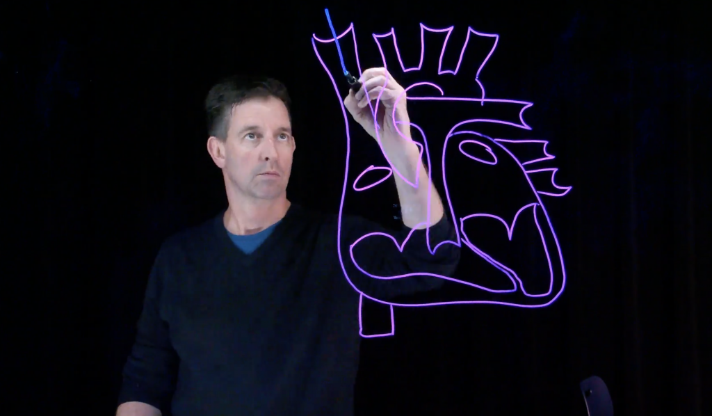 Image of man diagraming bloodflow in the heart on a lightboard.